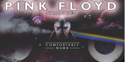 Pink Floyd Tribute