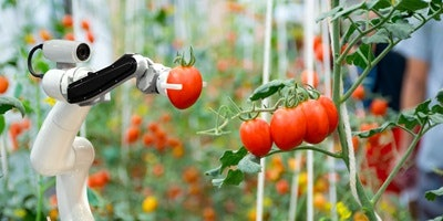 Creating a Sustainable Food Future