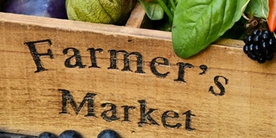 Elemental AKL Farmers Market Tours