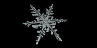 Snowflake by Mike Bartlett