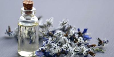 Natural Living: DIY Herbal Medicine for Sleep, Stress and Fatigue