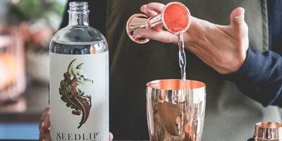 Seedlip Cocktail Masterclass