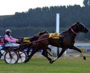 Oamaru Racecourse