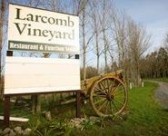 Larcomb Vineyard