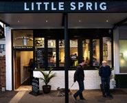 Little Sprig